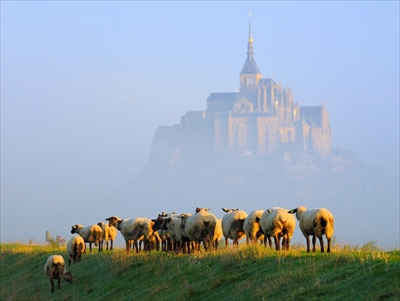 Mont-Saint-Michel-Normandy_R.jpg